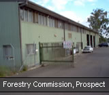 Forestry Commission, Prospect